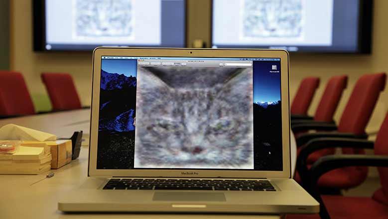 Después de que se le mostraron 10 millones de fotos, un sistema de IA creado por un equipo de investigadores de Google aprendió por sí solo a reconocer varias categorías de imágenes diferentes, incluidos gatos.